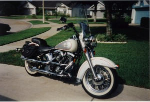 1994 Harley FLSTN, my first H-D