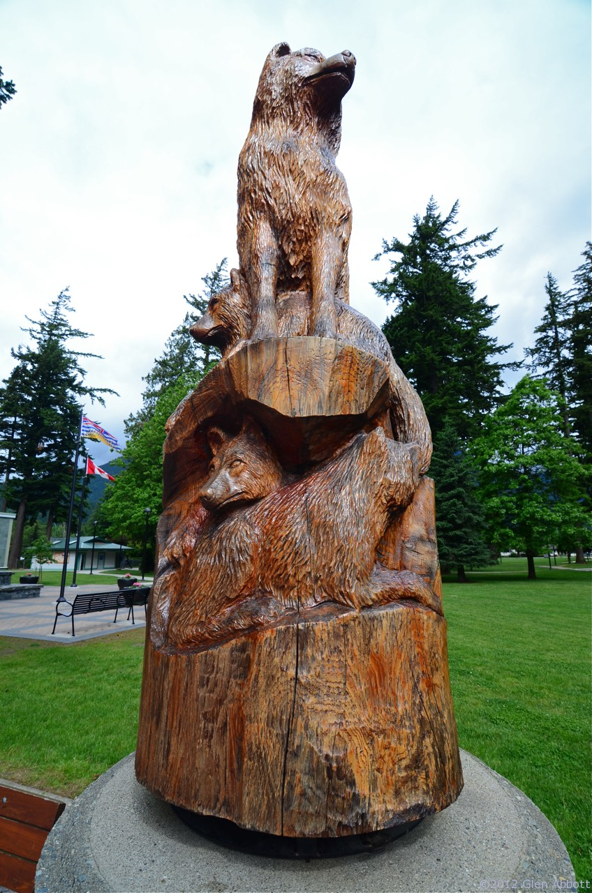 The art of chainsaw hope british columbia canada