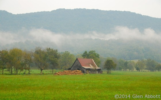 Tennessee Morning Fog